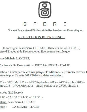 FREE DOWNLOAD - Massimo Tonietto D.O. Personal Web Site